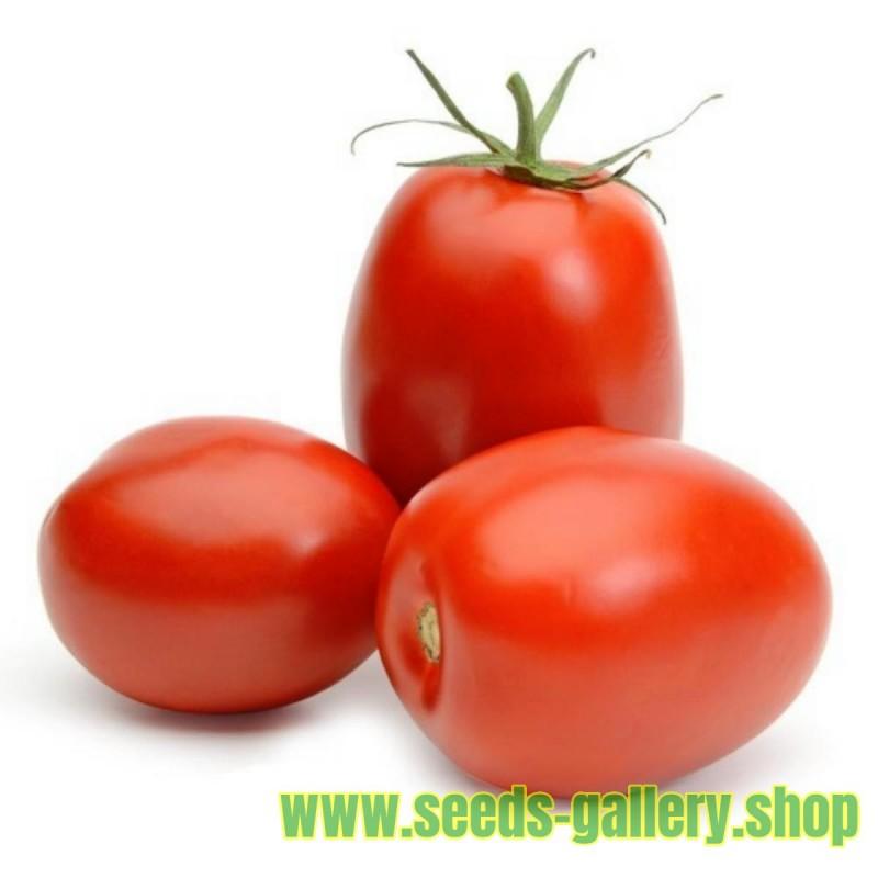 Tomato Seeds Rio Grande