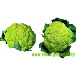 Zeleni Karfiol Seme - Zdravo Povrce
