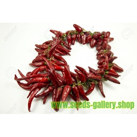 "The Hungarian chilli Seeds ""Ceruza erős paprika"""