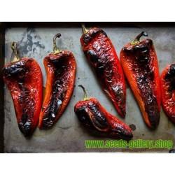 Semillas De Pimiento Rojo Dulce Amphora