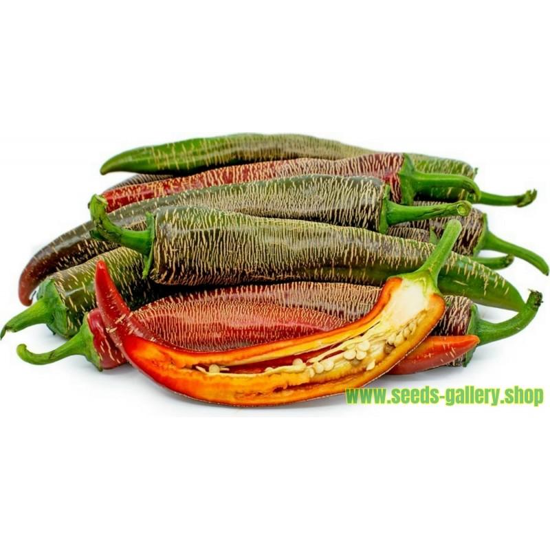 "Pimenta ""Vezanka"" 500 Sementes - Antigo variedade sérvio"