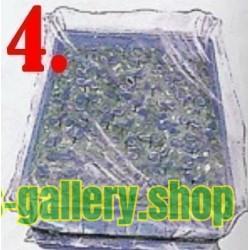 Comment et quand semer des Passiflore