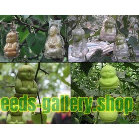 Molde de frutas na forma de Buda, pêra, melão