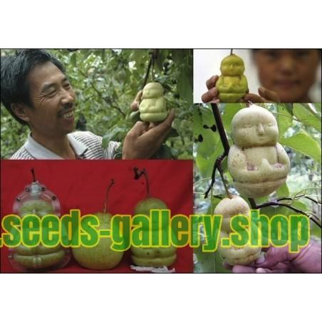 Φρούτα Μούχλα με τη μορφή του Βούδα, το αχλάδι, το πεπόνι