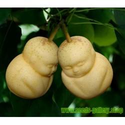 Molde de frutas en forma de Buda, pera, melón