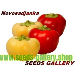 Sweet Pepper Seeds ''Novosadjanka''