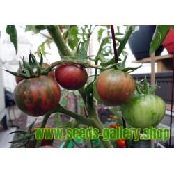 Black Vernissage Tomato Seeds
