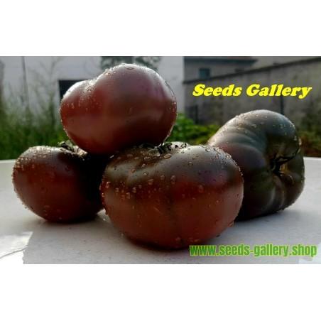 Semillas de tomate Marquise Rosa y Negro