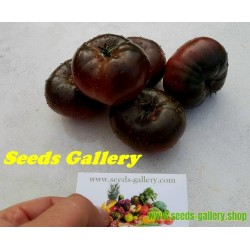 Pink and Black Marquise Tomato Seeds
