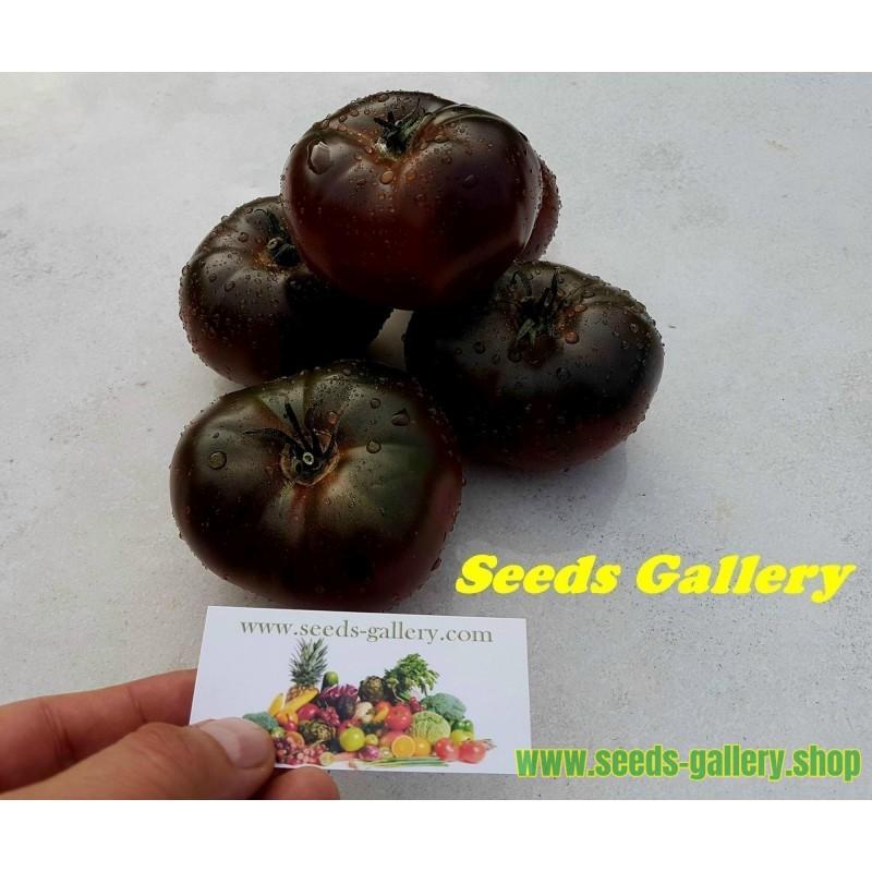 Sun Jewel , Chamoe, Korean melon Seeds