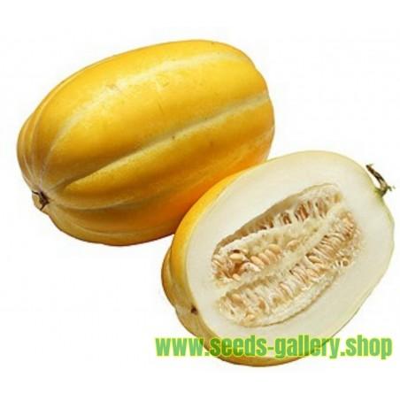Graines De Melon Coréen, Sun Jewel, Chamoe