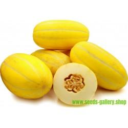 Koreanska Melon Frö, Sun Jewel, Chamoe