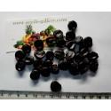 Bilberry Fröer (Vaccinium myrtillus)