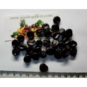 Bilberry - Whortleberry Seeds (Vaccinium myrtillus)