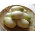 Samen Gold-Apfel - sehr duftend Köstlich einzigartig Selten (Diospyros decandra)