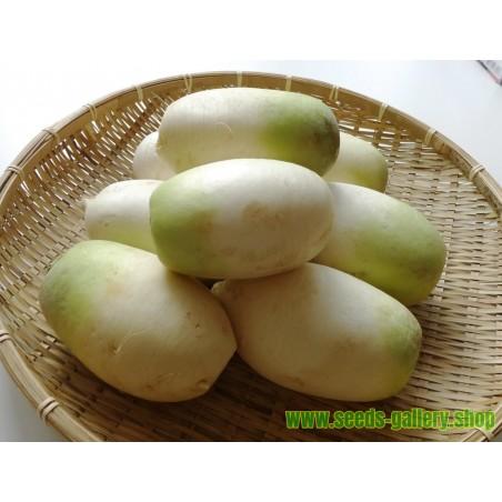 Graines de Jamaican Cherry (Muntingia calabura)