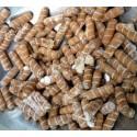 Pasteque Lune-Etoile 100 Graines