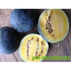 Yellow Watermelon JANOSIK 100 Seeds
