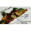 Winterportulak - Gewöhnliche Tellerkraut Samen (Claytonia perfoliata)
