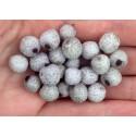 Silver Buffaloberry seeds - Edible fruits (Shepherdia Argentea)