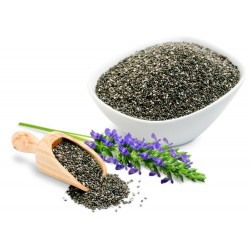 BLACK CHIA Seeds (Salvia hispanica)