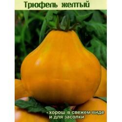 Σπόροι ντομάτας Κίτρινη Τρούφα - Yellow Truffle
