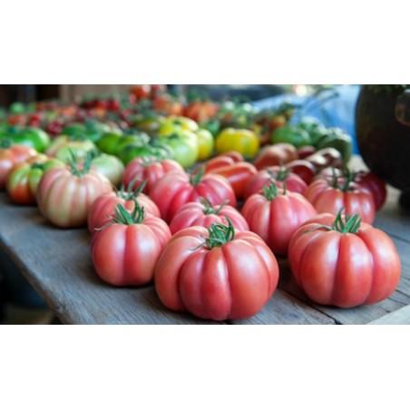 Stampo per frutta e verdura, A forma di cuore, Cambiamento Frutta Forma
