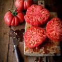 Wolgograder Tomate Samen Russische Sorte