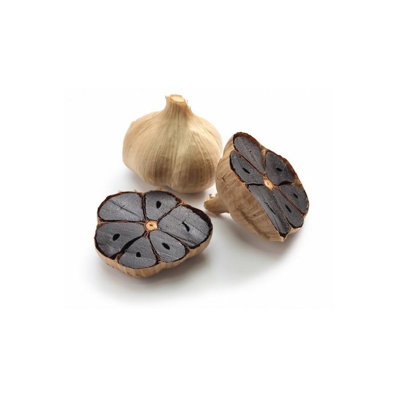 Graines de Corossolier (Annona muricata)