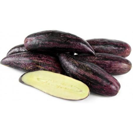 Sementes Melão-Andino Gigante Roxo Raras (Solanum muricatum)