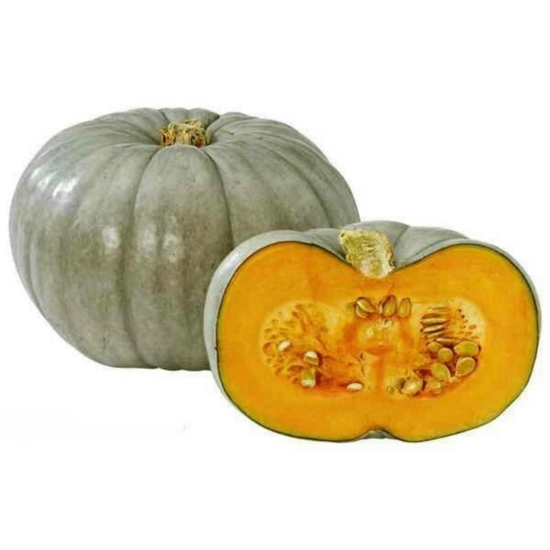 Prince Crown Pumpkinsfrön
