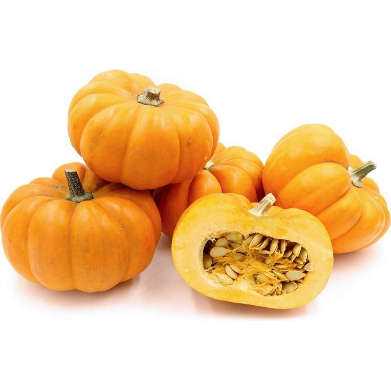 Mini Musk Pumpkin Seeds