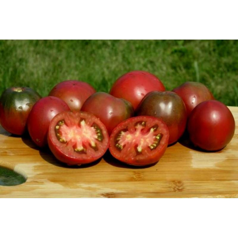 Zigan (Zigeuner, Gipsi) Tomaten Samen
