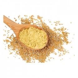 Spezia di senape gialla - macinata