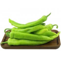 """Gourmet Hot"" serbischer scharfer Chili Samen"