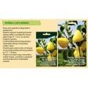 'Dipper' Gourd Seeds