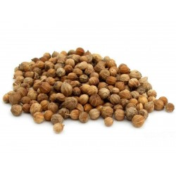 Especias y medicina del cilantro - fruta entera