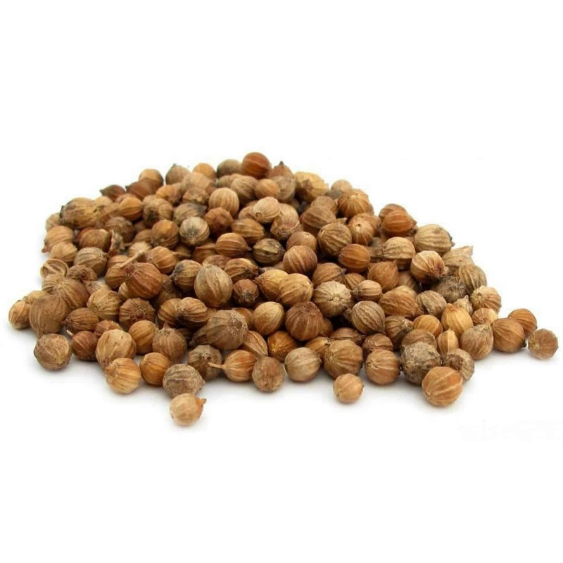 Coriander spice and medicine - whole fruit