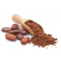 Pedaços de cacau crus - os melhores antioxidantes