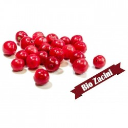 Red peppercorns - spice