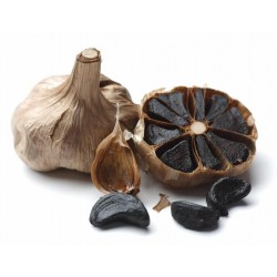 Black garlic BLACK GOLD - spice