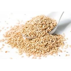 Graines de SÉSAME blanc (Sesamum indicum)
