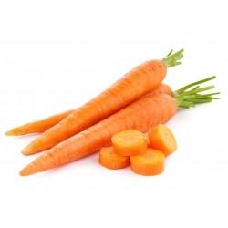 20g - 14.000 Semi di carota...