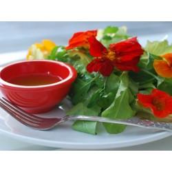 Sementes de Cinco-chagas comestível 2 - 2