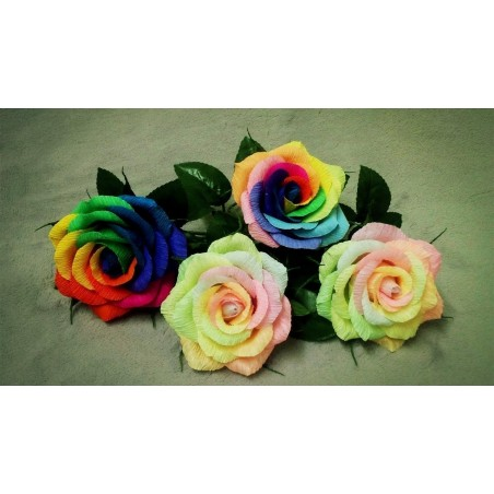 Rainbow Rose Seeds 2.5 - 3