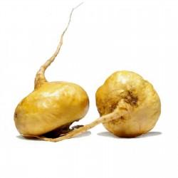 Мака перуа́нская семена (Lepidium meyenii) 2.2 - 1