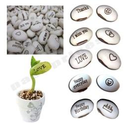 Magic Growing Message Beans Seeds 1.55 - 4