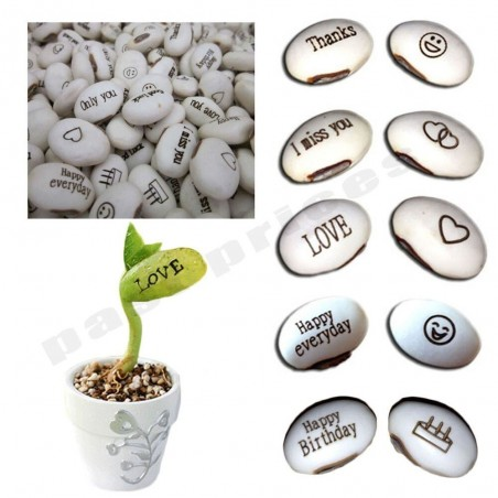 Magic Growing Message Beans Seeds 1.55 - 4