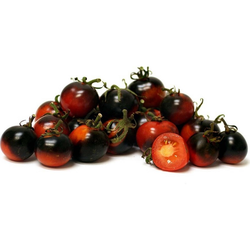 INDIGO ROSE Tomato Seeds 2.5 - 1
