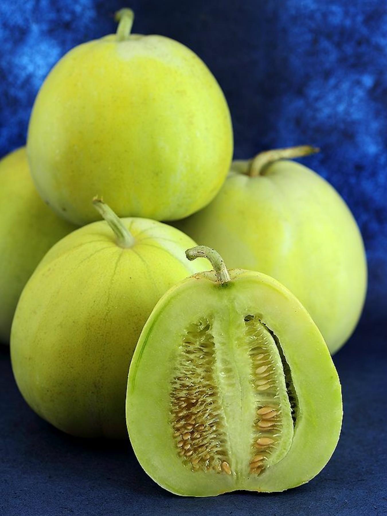 Semillas de calabaza japonesa black futsu for Semillas de cactus chile
